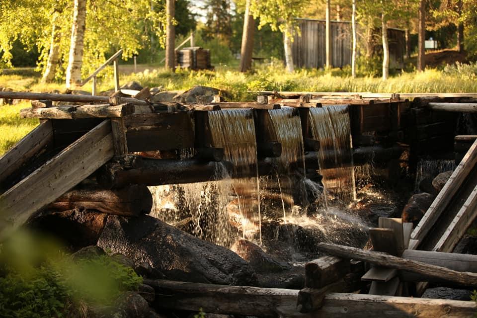 Guidad tur i Torvsjö kvarnar och skogsmuseet